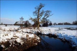 Hothfield in snow
