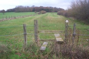 Stour Valley Walk near Hothfield