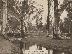 First Creek Hazelwood Park Sth australia 1925